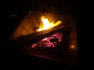 慶野松原キャンプ場で強風の中焚火1