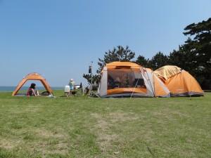 慶野松原キャンプ場フリーサイト1