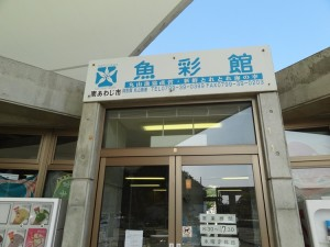 淡路島の魚彩館に行ってみた05