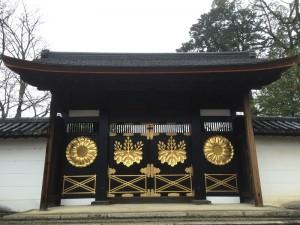 醍醐寺-桜-花見02