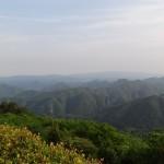 2014-05-24-1654-大野山-山頂-03