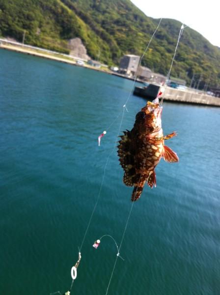 2013-05-05-1450-阿尾漁港-釣り003