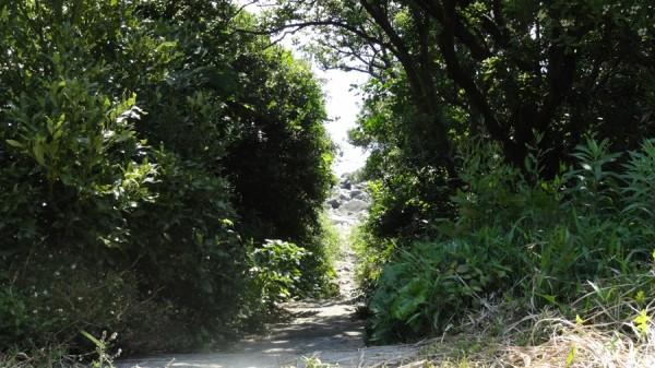 日の岬オートキャンプ場-磯遊びへの道