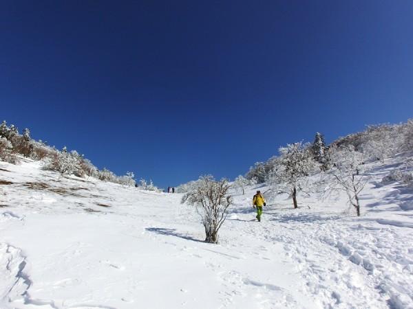 2014-02.23-13.57-三峰山-雪山-登山-樹氷20