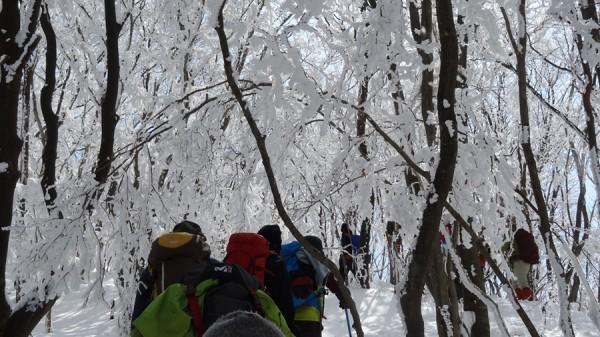 2014-02.23-22.12-三峰山-雪山-登山-樹氷36