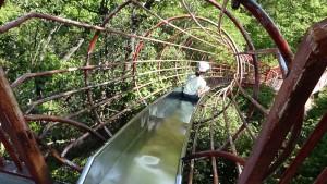 2015-05-05-1508-滋賀県希望が丘文化公園03