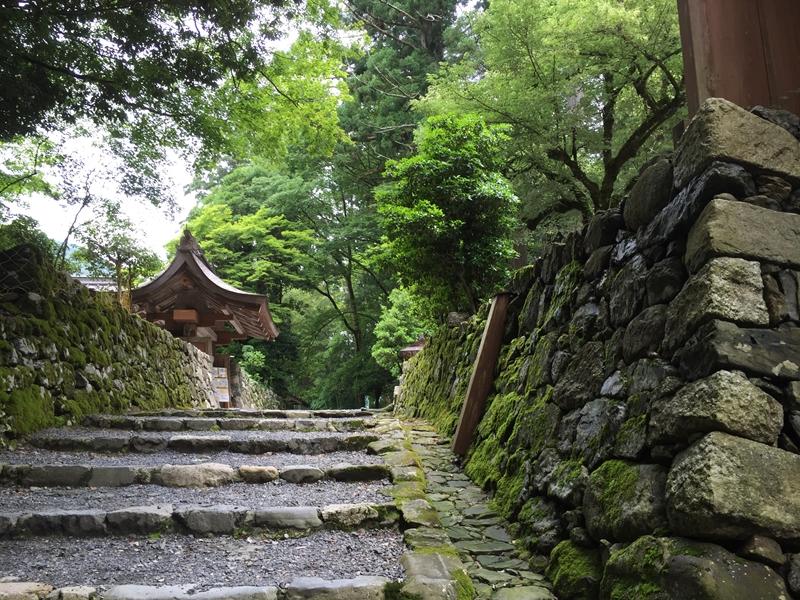 20150620-1037-武奈ヶ岳-登山19