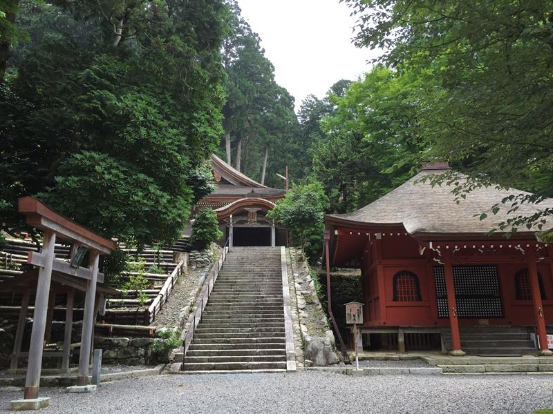 20150620-1037-武奈ヶ岳-登山21
