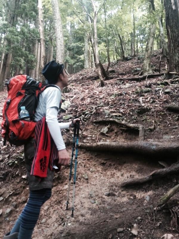 20150620-1447-武奈ヶ岳-登山57
