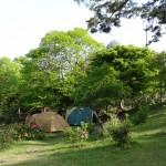 2014-05-24-1637-大野山アルプスランドキャンプ場-001