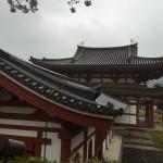 2015-04-01-1400-宇治-平等院-桜50