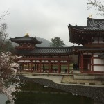 2015-04-01-1401-宇治-平等院-桜52